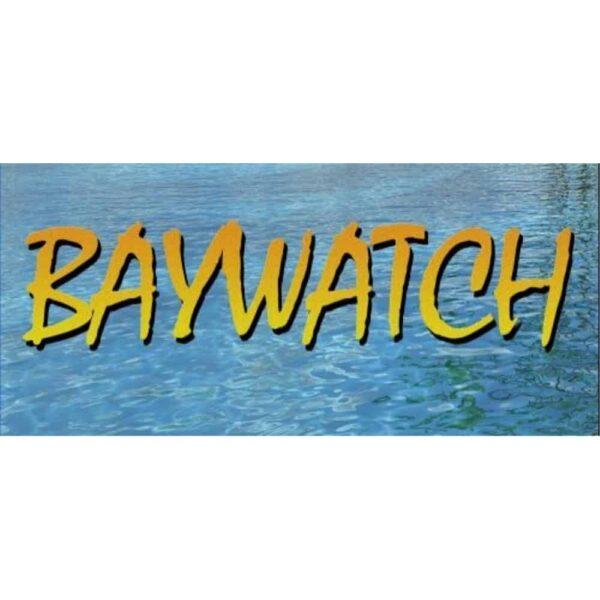 Baywatch Fantasy Sideart